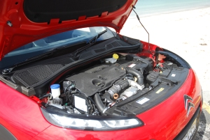 cactus engine